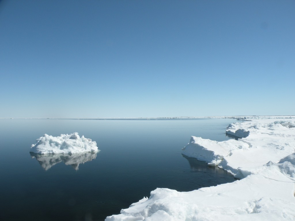 Hudson Bay ice edge.