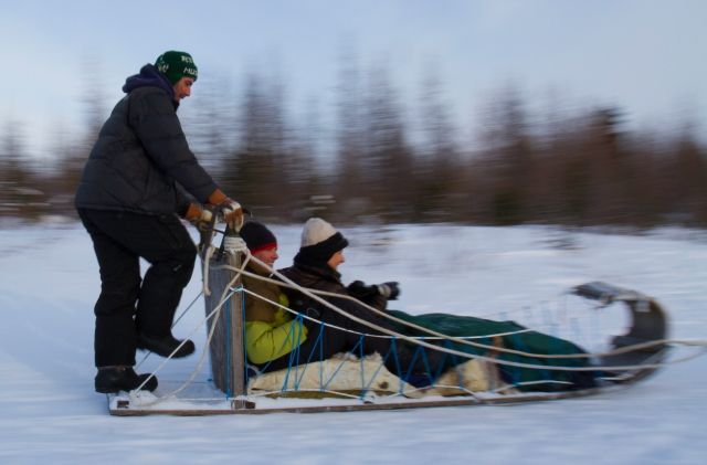 Dogsleeding in CHurchill,MB.
