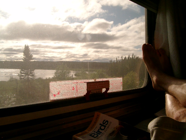 Amazing view from my cabin aboard the Hudson Bay railroad train to Churchill,MB from Winnipeg, MB.