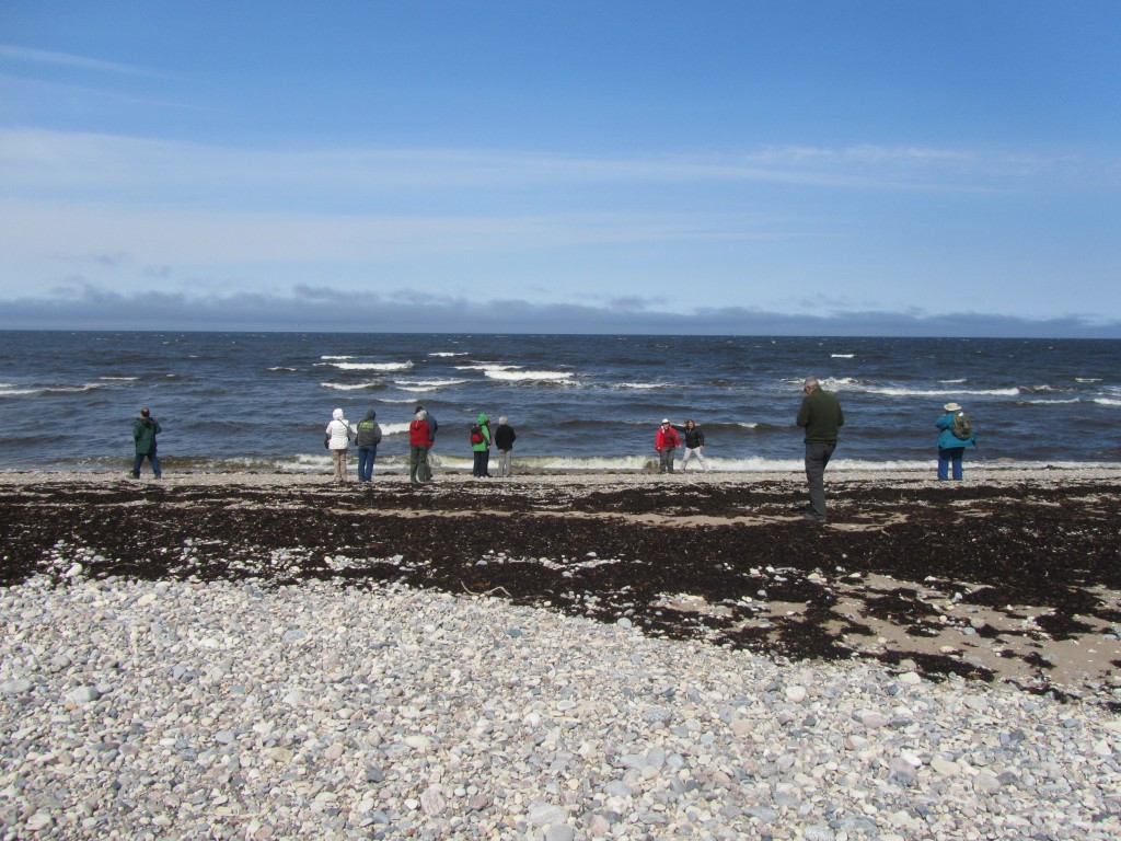 Natural Habitat travelers enjoying the Hudson Bay coast. Stephanie Fernandez photo.