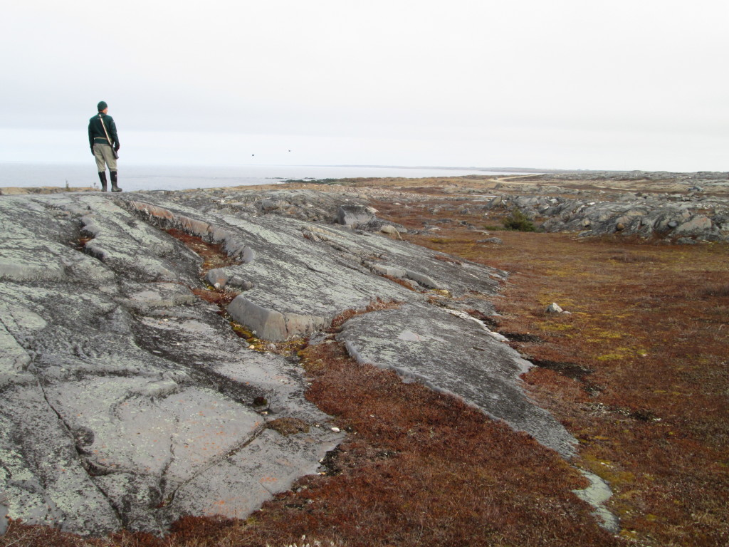 Looking out over the tundra in Churchill from the precambrian sheild.