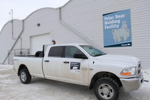 The polar bear holding facility holds up to 25 polar bears that have been captured due to interactions with humans or coming into the town of Churchill, Manitoba's limits.
