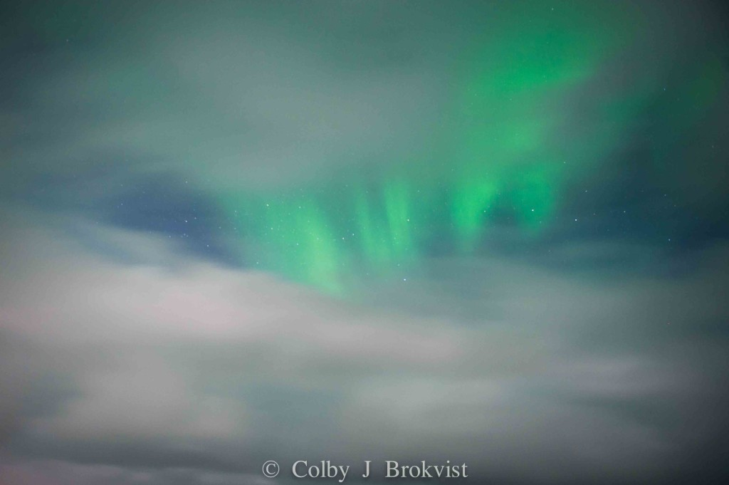 Aurora season in Churchill, Manitoba is coming at the end of January.