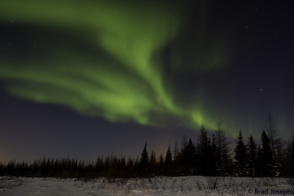 Aurora borealis in Churchill.