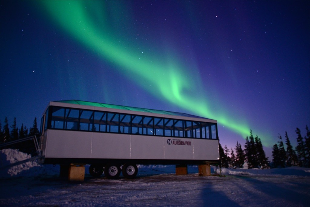 northern lights viewing from Natural Habitat's Aurora Pod.