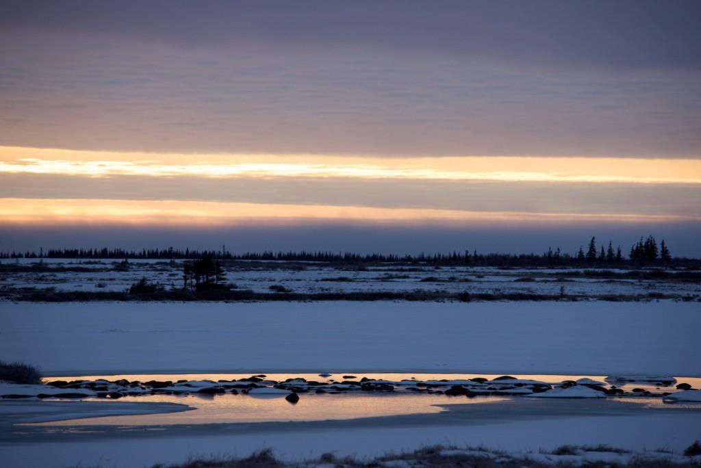 Churchill Tundra