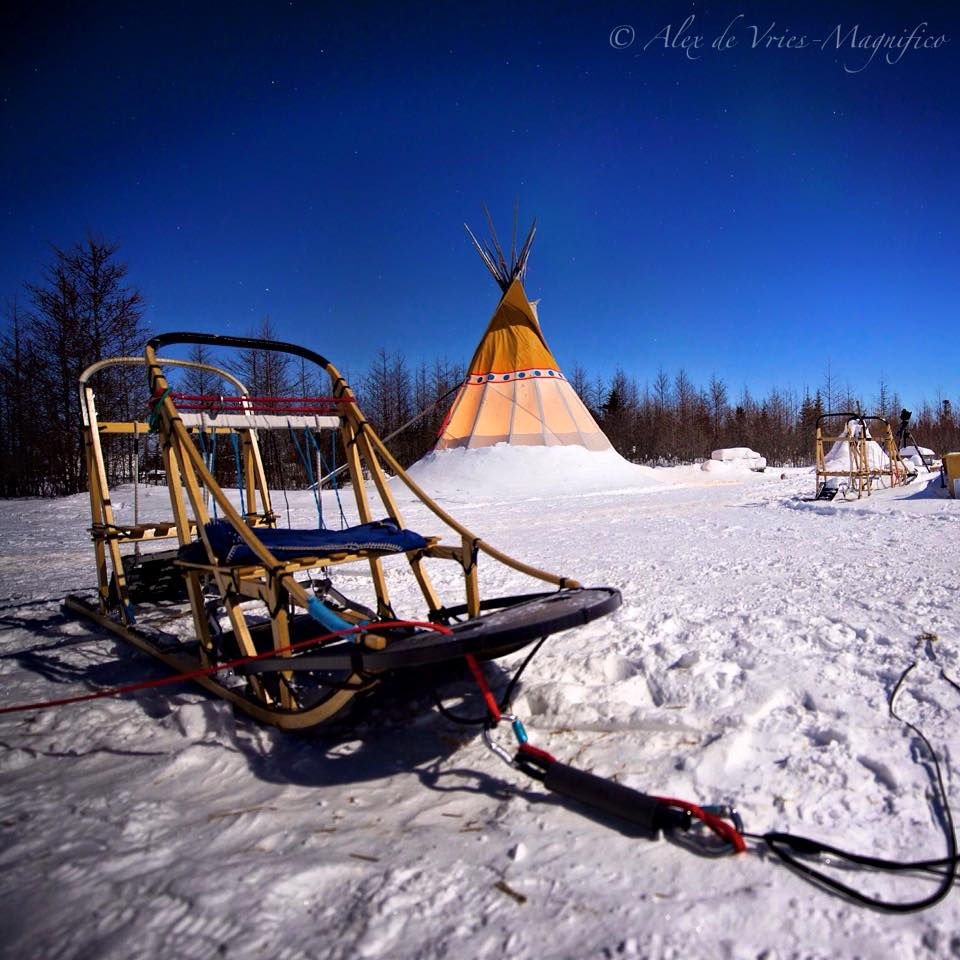 wapusk dog yard Churchill
