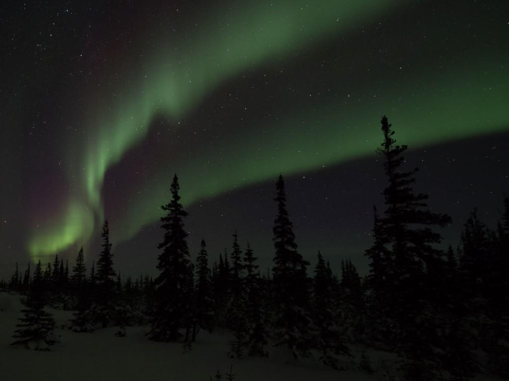 aurora borealis churchill manitoba