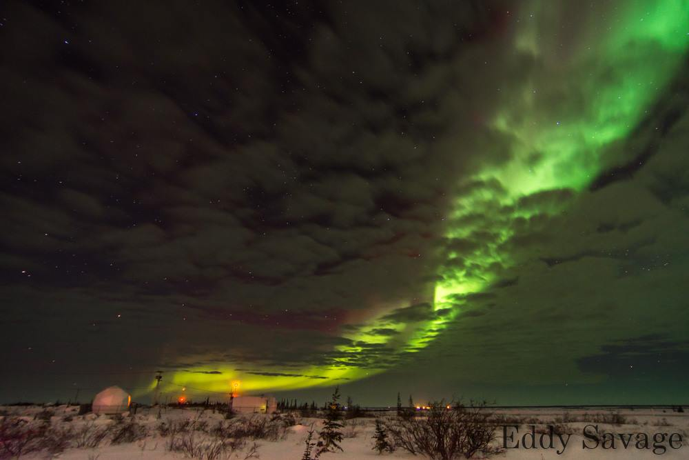 aurora borealis churchill