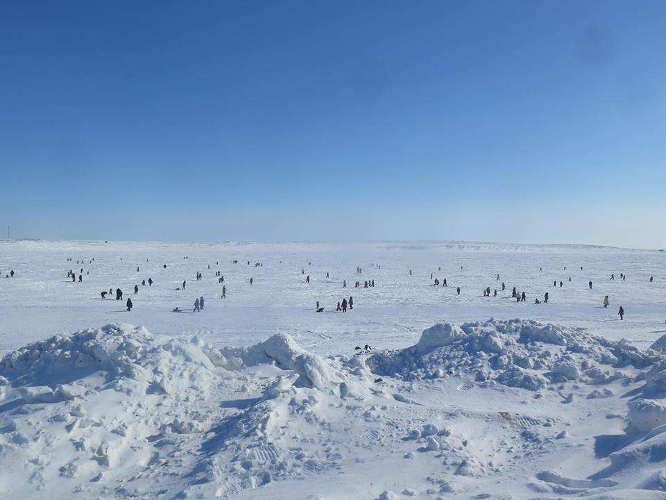 Cambridge Bay Arctic egg hunt