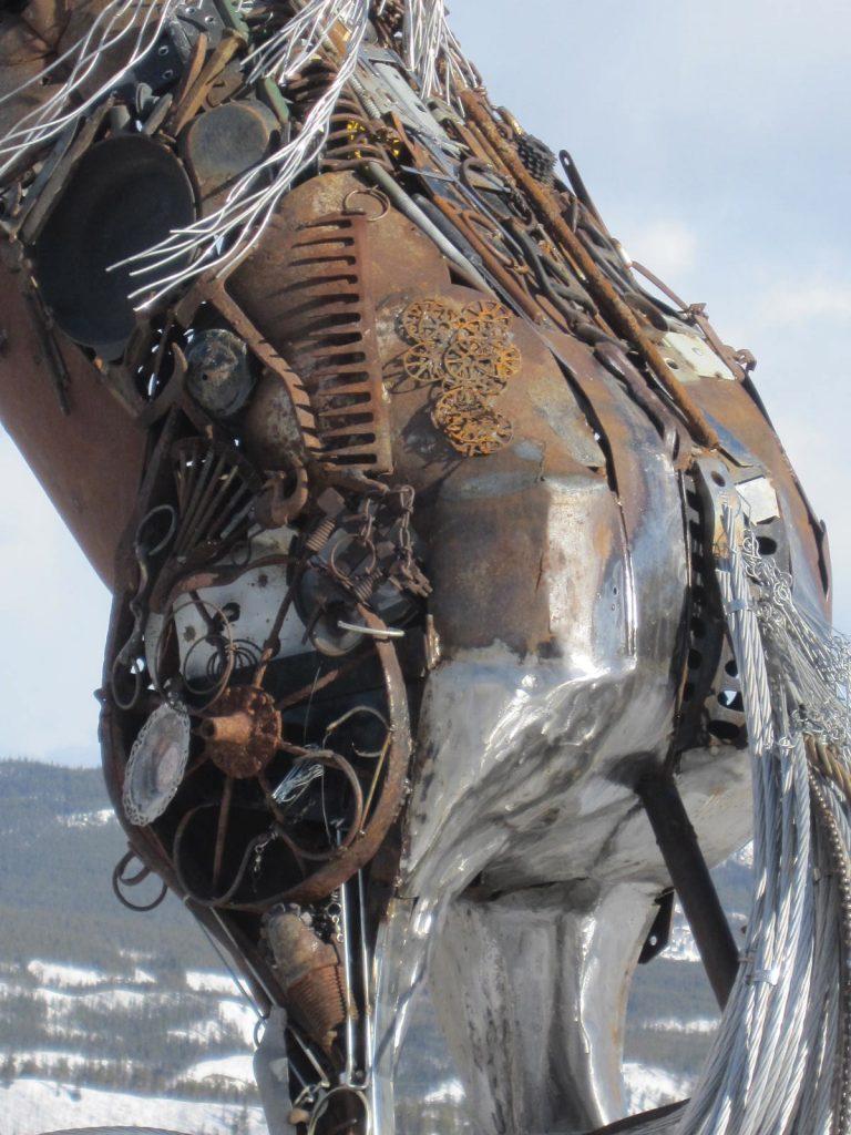 Whitehorse horse Daphne Mennell.