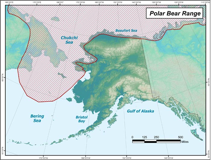 polar bear habitat in Alaska