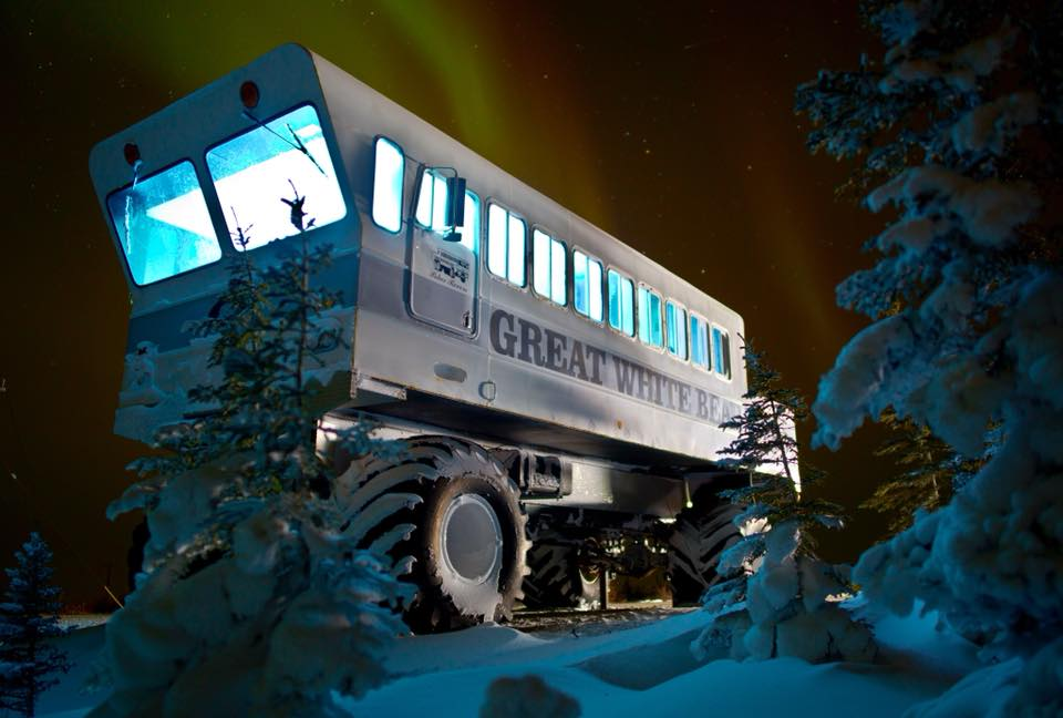 Great White Bear polar rover churchill