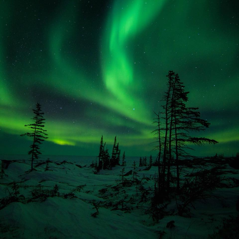 northern lights in Churchill.