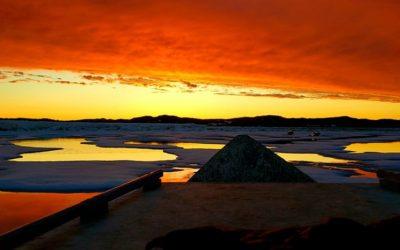 Three Arctic Images