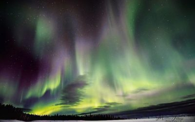Churchill Weekly Photos – Northern Lights
